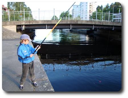 fiske i Mieån