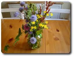 ladda ned blommor
