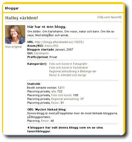 bloggstatistik