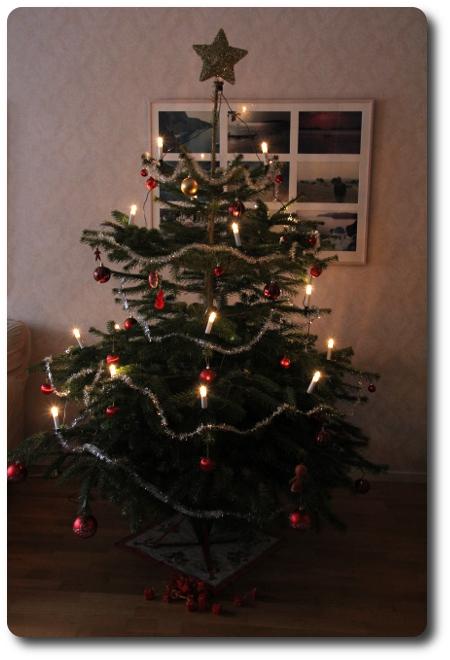 julgran - helheten