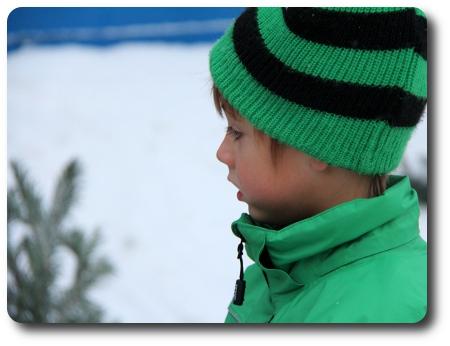 Sjuåringen tittar på granar