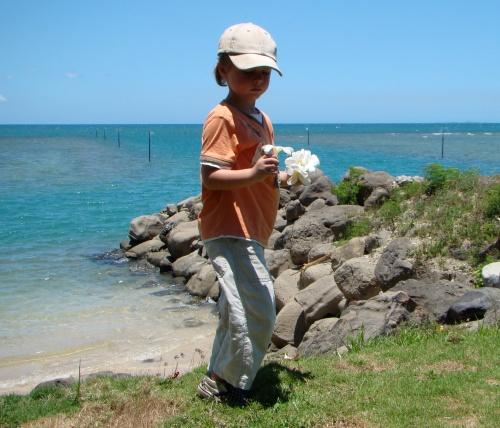 2008 Fiji