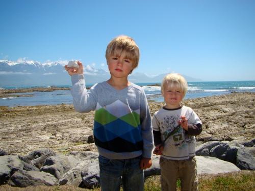 2008 Nya Zeeland