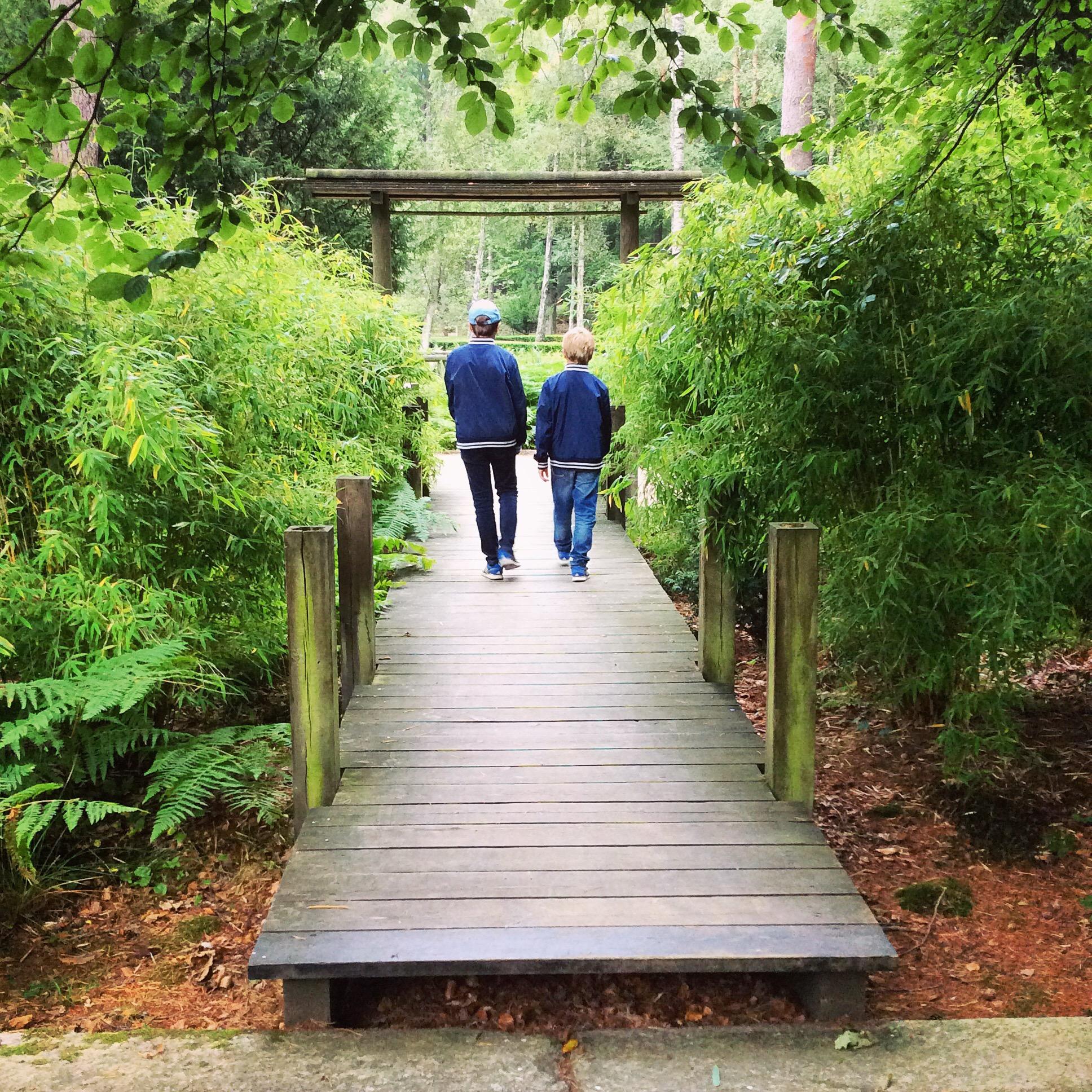 Japansk trädgård i Brunnsparken.